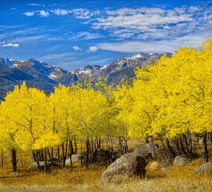 autumn_trees_mountains_fall_photoshop_canon_colorado_boulders-537920.jpg!d.jpg